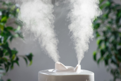 Portable or Whole Home Humidifiers | Climate Control