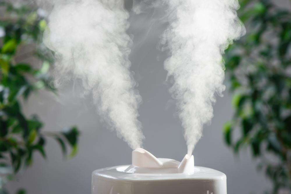 Three Types of Humidifiers You Should Consider Investing In